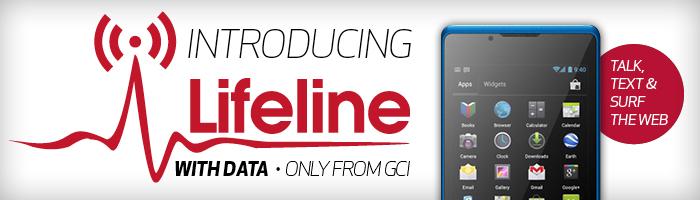 consumer-subpage-banner-LIFELINE-DATA-700x200