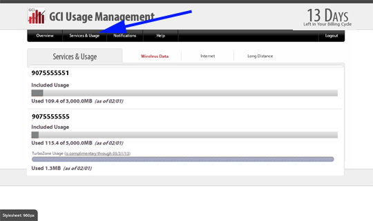 Service & Usage Link